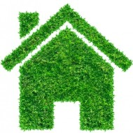 Five ways to kick-start your green living regime