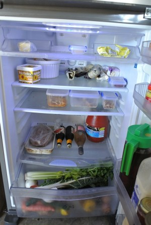 down to earth mother fridge 3