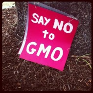 March against Monsanto for World Food Day