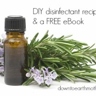 DIY disinfectant and FREE ebook!