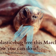 Go plastic bag free for one month. Pretty please?