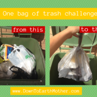 Take the 1 bag of trash challenge!